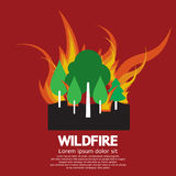 Wildfire Disaster Stock Photography