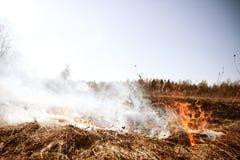 wildfire Feuer Globale Erwärmung, Klimakatastrophe Conce lizenzfreie stockbilder