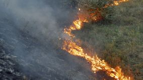 Wildfire flames and smoke in nature stock footage