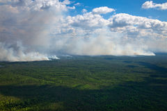 Wildfire in forest. Aerial view of wildfire in forest in cloudy summer day Stock Photos