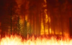 Wildfire or Forest fire graphic illustration for billboard. 3D illustration Wildfire or Forest fire graphic illustration for billboard Royalty Free Stock Image