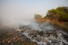 Wildfire or forest fire in the nature, Fire fighters will be fighting fire.  Stock Photography