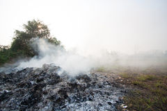Wildfire or forest fire in the nature, Firefighters will be fighting fire.  Stock Images