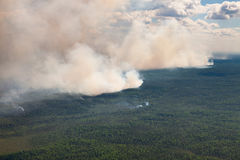 Wildfire in forest, top view Royalty Free Stock Image