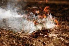 wildfire Fuego Calentamiento del planeta, catástrofe ambiental Conce Imagen de archivo libre de regalías