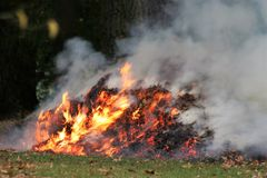 Wildfire, Geological Phenomenon, Fire, Smoke royalty free stock images