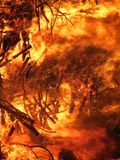 Wildfire, Geological Phenomenon, Flame, Fire royalty free stock photo