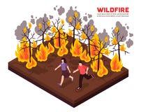 Wildfire Isometrische Illustratie royalty-vrije illustratie