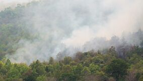 Wildfire in mountain of thailandpan shot
