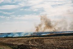 Wildfire or natural fire in fields, natural disaster concept Stock Photography