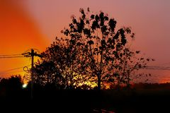 The wildfire at night from cane farming in countryside thai stock images