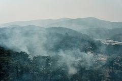 Wildfire, smoke filled sky above forest. Concept: warming, climate change. Wildfire, hot air and smoke filled sky above forest. Concept: warming, climate change stock image