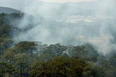 Wildfire, smoke filled sky above forest. Concept: warming, climate change. Wildfire, hot air and smoke filled sky above forest. Concept: warming, climate change royalty free stock photo