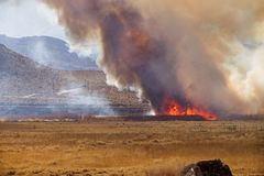 Wildfire. In the Owens Valley near Pleasant Valley Campground Stock Photography