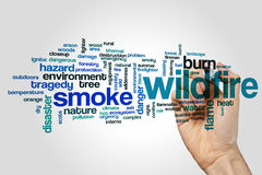 Wildfire word cloud. Concept on grey background Royalty Free Stock Photo