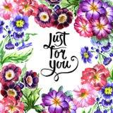 Wildflower altówki kwiatu rama w akwarela stylu odizolowywającym Obraz Stock