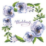 Wildflower anemone flower frame in a watercolor style isolated. Stock Images
