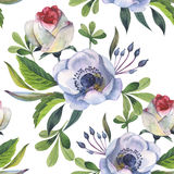 Wildflower anemone flower pattern in a watercolor style isolated. Full name of the plant: anemone, nemorosa. Aquarelle wild flower for background, texture Stock Images