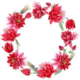 Wildflower Aquilegia flower in a watercolor style wreath. Stock Photo