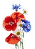 Wildflower arrangement Stock Photography