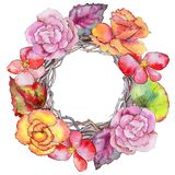 Wildflower begonia flower wreath in a watercolor style. Royalty Free Stock Image