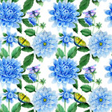 Wildflower blue dahila flower pattern in a watercolor style isolated. royalty free illustration