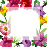 Wildflower Bluebell Flower frame in a watercolor style isolated. Royalty Free Stock Image