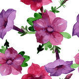 Wildflower Bluebell Flower pattern in a watercolor style isolated. Stock Photo