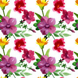 Wildflower Bluebell Flower pattern in a watercolor style isolated. Stock Photos