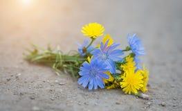 Wildflower bouquet on asphalt Stock Photo