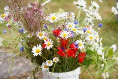 Wildflower bouquet Royalty Free Stock Photo