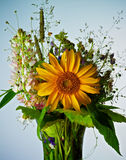 Wildflower Bouquet Royalty Free Stock Images