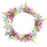 Wildflower bouquet wreath in a watercolor style. Full name of the plant: poppy. Aquarelle wild flower for background, texture, wrapper pattern, frame or border Stock Photography