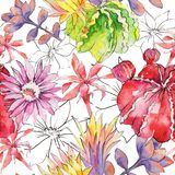 Wildflower cactus flower pattern in a watercolor style. Full name of the plant: Aloe. Aquarelle wild flower for background, texture, wrapper pattern, frame or Stock Image