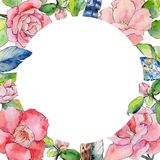 Wildflower camellia flower frame in a watercolor style. Stock Images