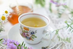 Wildflower and chamomile tea Stock Photo