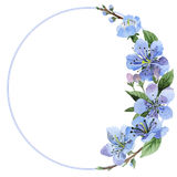 Wildflower cherry flower frame  in a watercolor style isolated. Stock Image