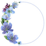 Wildflower cherry flower frame  in a watercolor style isolated. Stock Photo