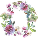 Wildflower Chrysanthemum Flower Wreath In A Watercolor Style Iso Royalty Free Stock Image