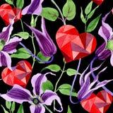 Wildflower clematis hanajima kwiatu wzór w akwarela stylu Obraz Royalty Free