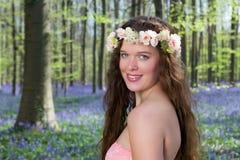 Wildflower czarodziejka obraz royalty free