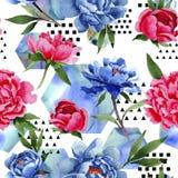 Wildflower czerwony i błękitny peonia kwiatów wzór w akwarela stylu Zdjęcia Stock