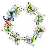 Wildflower dogwood flower wreath in a watercolor style isolated. Royalty Free Stock Photos