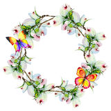 Wildflower dogwood flower wreath in a watercolor style isolated. Stock Images