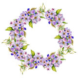 Wildflower dogwood flower wreath in a watercolor style isolated. Royalty Free Stock Image