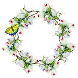 Wildflower dogwood flower wreath in a watercolor style isolated. Stock Image
