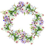 Wildflower dogwood flower wreath in a watercolor style isolated. Stock Photography