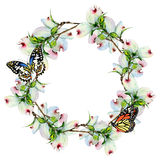 Wildflower dogwood flower wreath in a watercolor style isolated. Royalty Free Stock Photography
