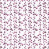 Wildflower flower poppy pattern in a watercolor style. Stock Photos