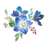Wildflower forgetmenot flower in a watercolor style isolated. Royalty Free Stock Photo